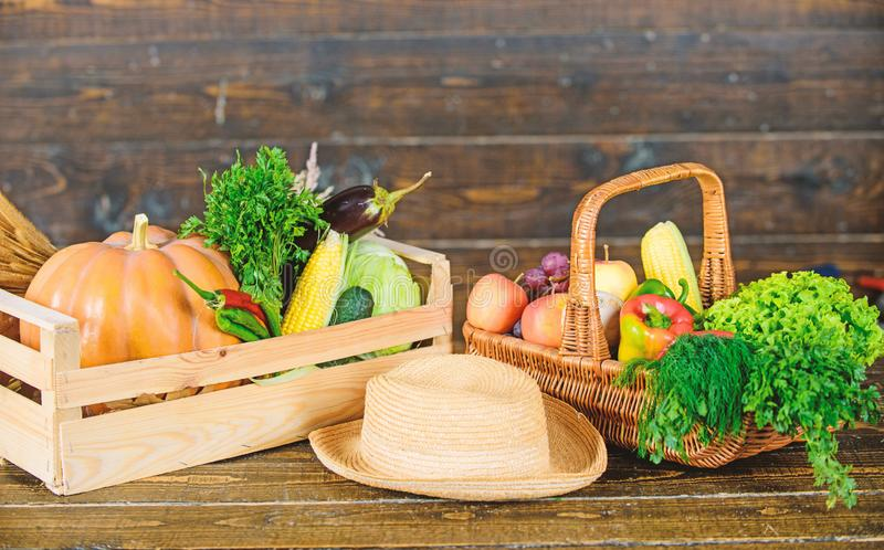 Locally grown natural food. Farmers market. Vibrant and colorful vegetables. Homegrown vegetables. Fresh organic. Vegetables wicker basket. Fall harvest concept stock photo