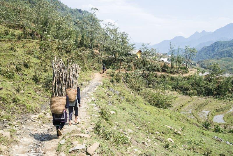 Locals de Hmong que trabalham em Sapa, Vietname foto de stock royalty free