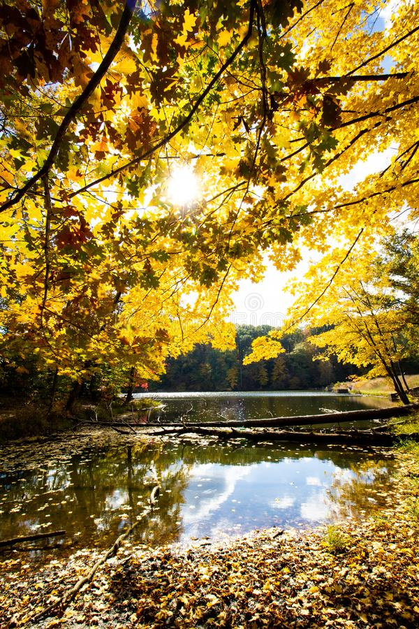 Fall on Ogle Lake, Brown County State Park, Indiana royalty free stock photo
