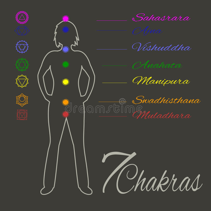 Location of main seven yoga chakras on the human body. Female silhouette with all the basic energy centers.Color illustration.Alternative medicine.Oriental or royalty free illustration