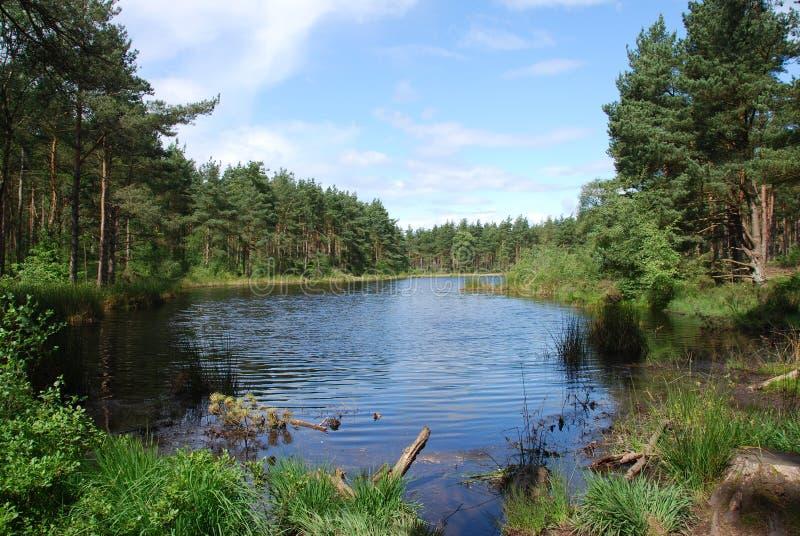 Loch de Bordie fotografia de stock