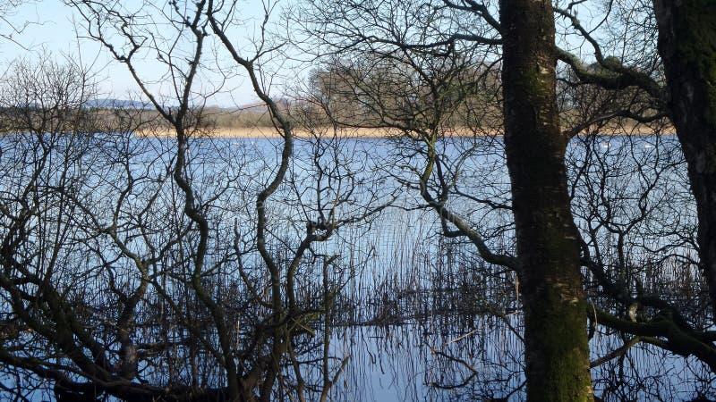 Loch de Lochmeben photographie stock libre de droits