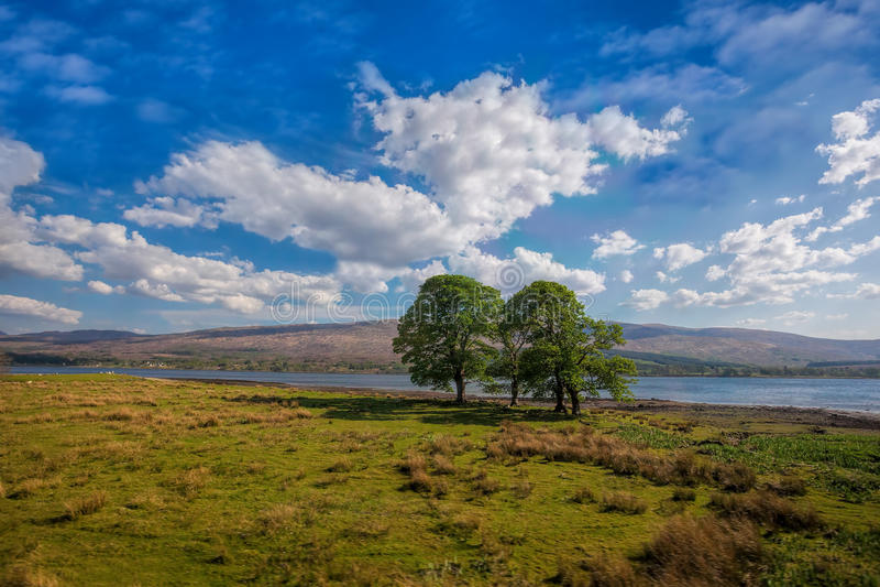 Loch Eil met bomen sluit het Fort William in Schotland royalty-vrije stock afbeeldingen