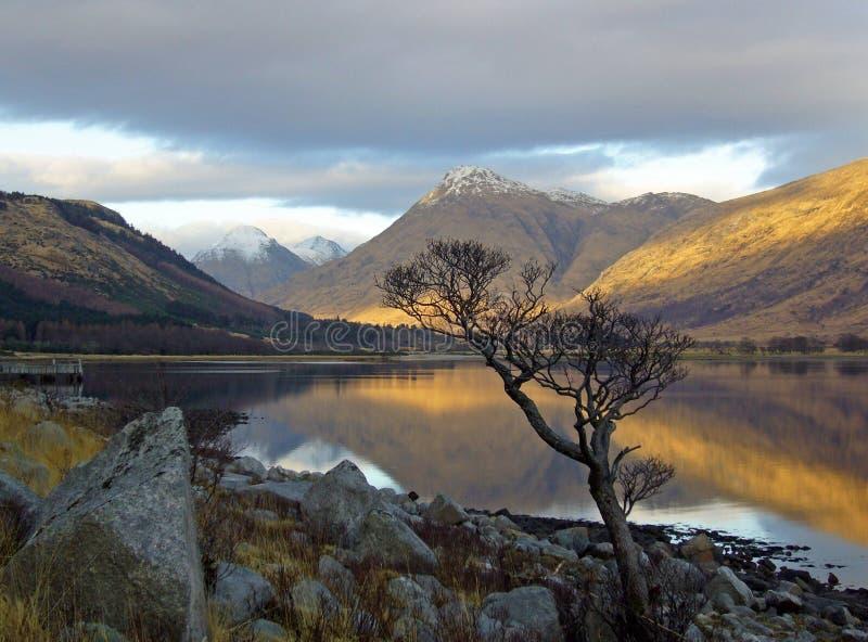 Loch Etive stockfotos