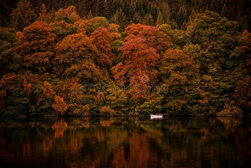 Loch Faskally, Scotland royalty free stock photo