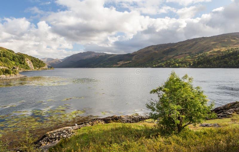 Loch lang von Schloss Eilean Donan in Schottland lizenzfreies stockfoto