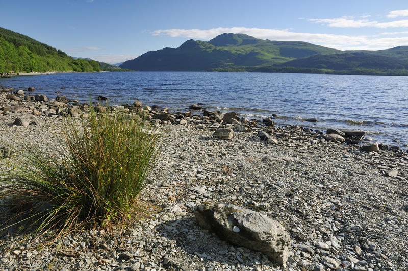 Loch Lomond Lomond & Ben obrazy royalty free