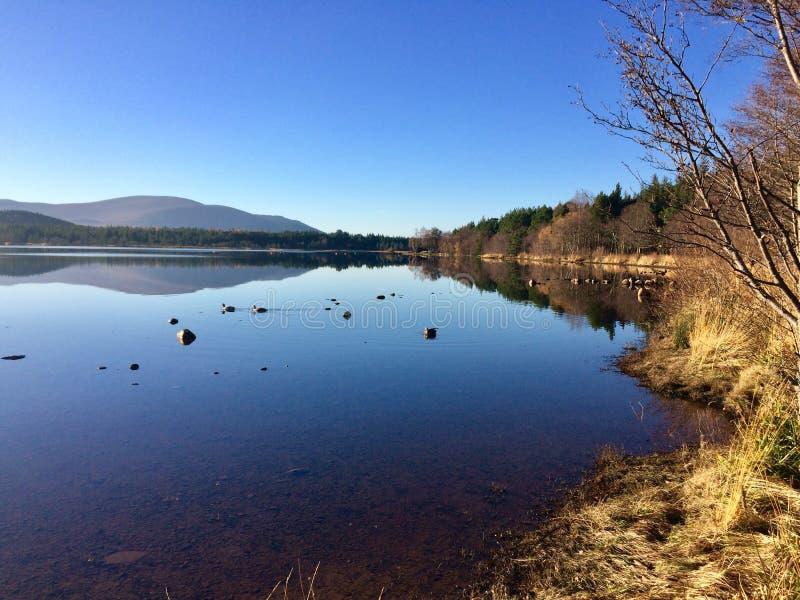 Loch Morlich, Escócia foto de stock royalty free