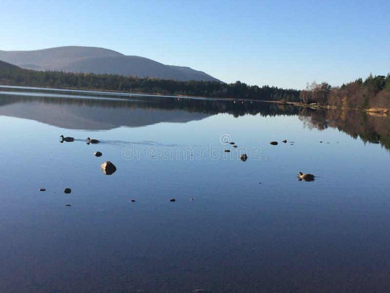 Loch Morlich Escócia das reflexões fotos de stock
