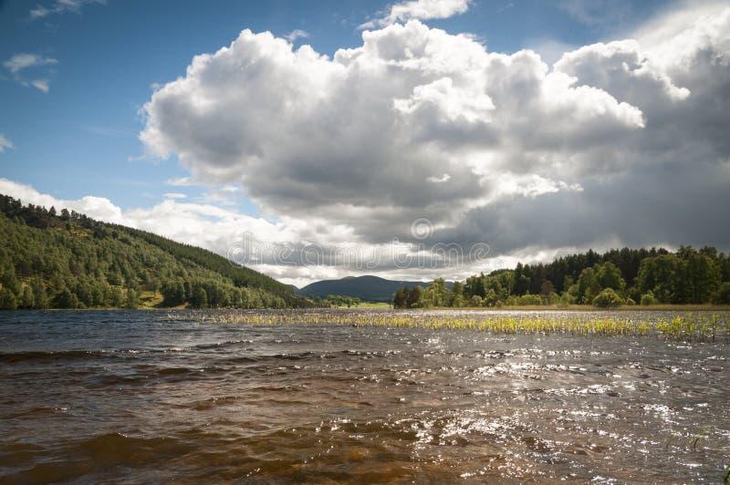 Loch Pityoulish royalty free stock image