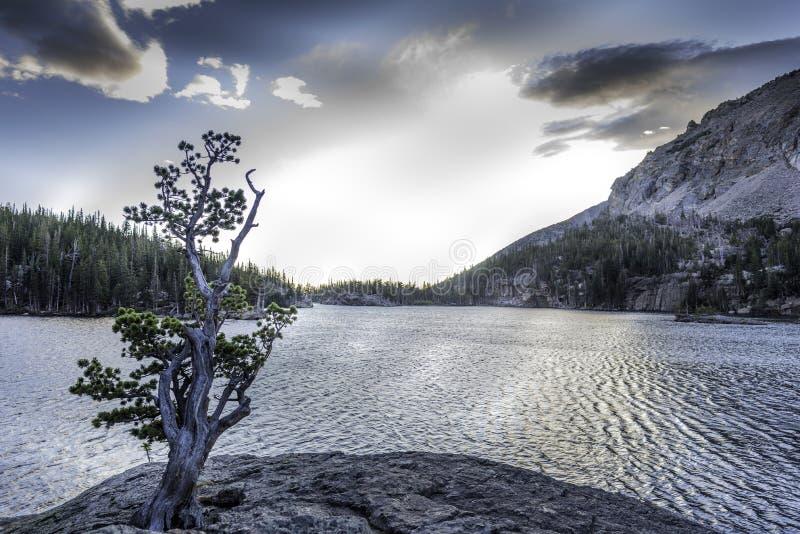 The Loch Sunrise royalty free stock photo
