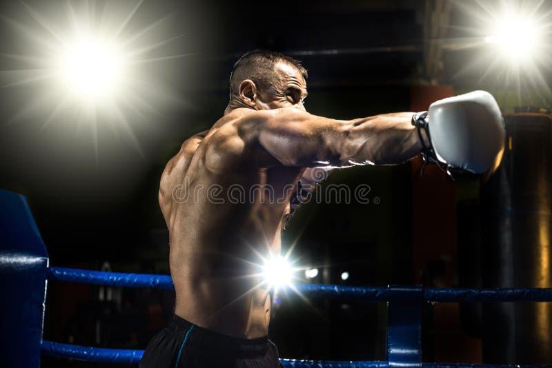 Lochender Boxer auf Boxring lizenzfreie stockfotos