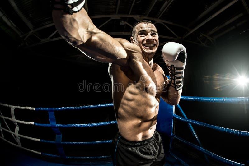 Lochender Boxer auf Boxring stockbilder