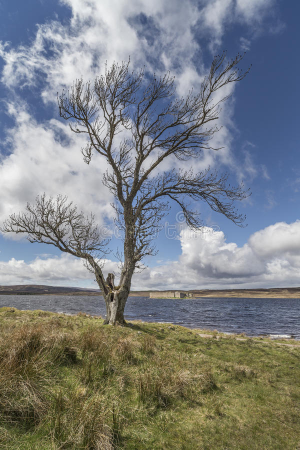 Lochindorb auf Dava Moor in Schottland stockbilder