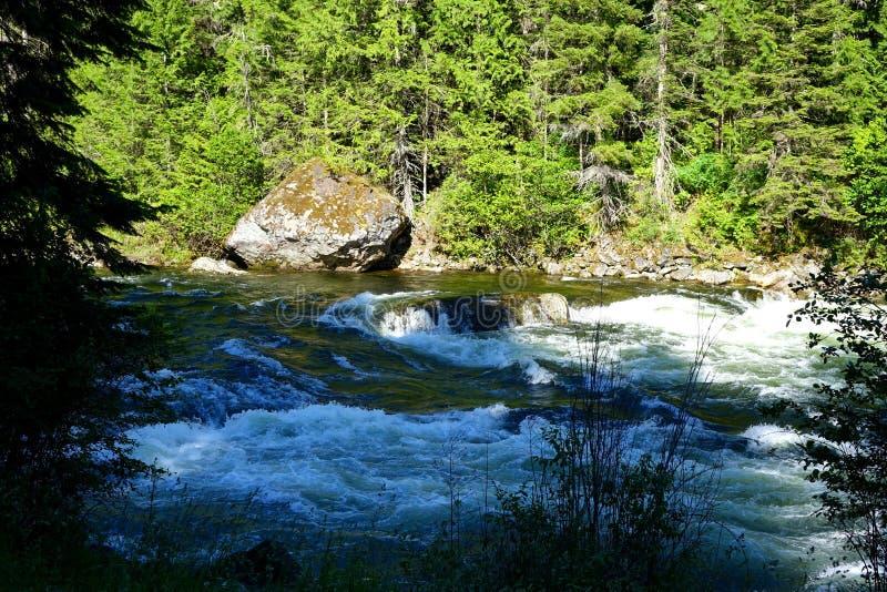 Lochsa rzeka - Idaho obrazy royalty free
