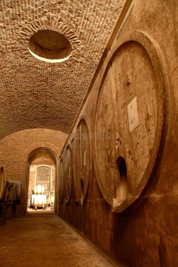 lochu wineyard fotografia stock