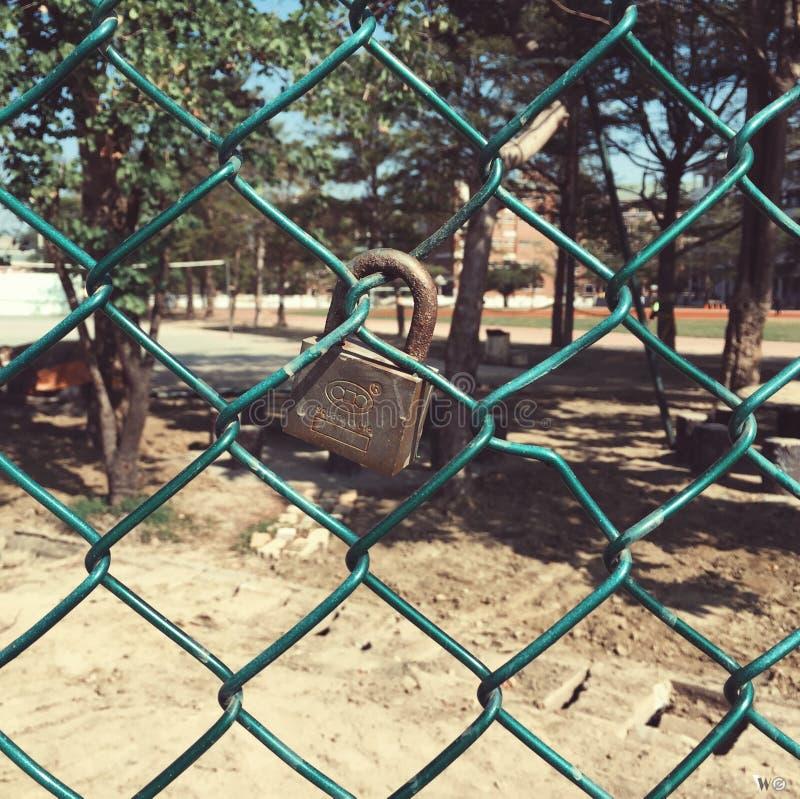 Download Lock stock photo. Image of green, school, tree, lock - 85132642