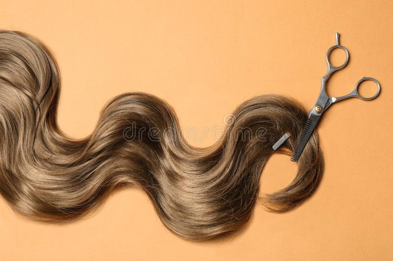 Lock of brown wavy hair and thinning scissors on color background. Flat lay stock image