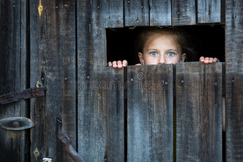 Locked the child anxiously looks through the crack in the barn door. Fright. stock photo