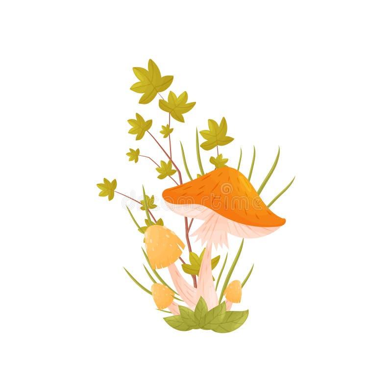 locket plocka svamp orangen white f?r vektor f?r bakgrundsillustrationhaj vektor illustrationer