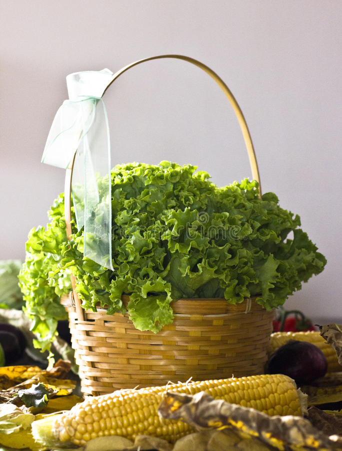 Lockig grön sallad i en korg och andra grönsaker arkivfoton