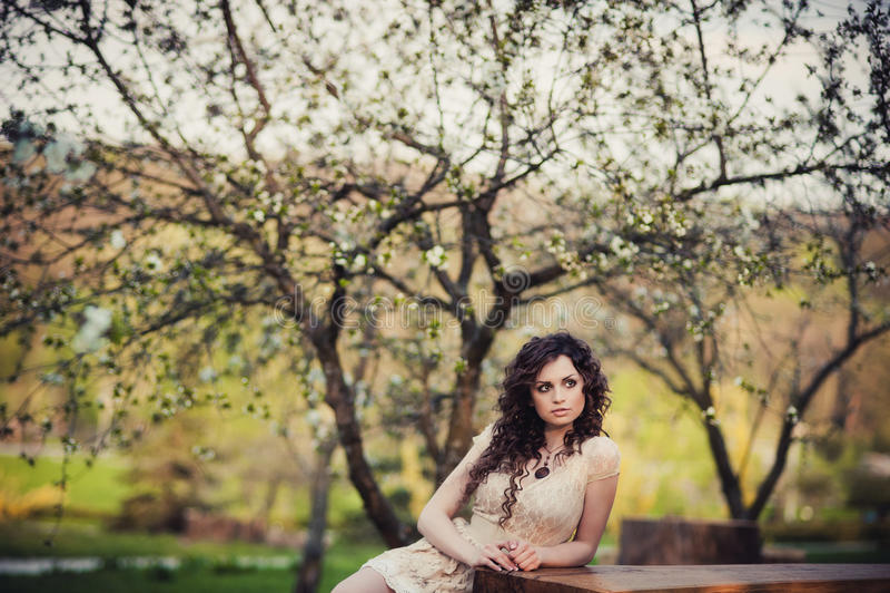 Lockigt brunettflickaanseende, i att blomstra träd arkivfoto