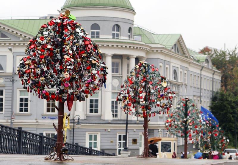 Locks on trees as a symbol of marriage. Urban scene stock photos