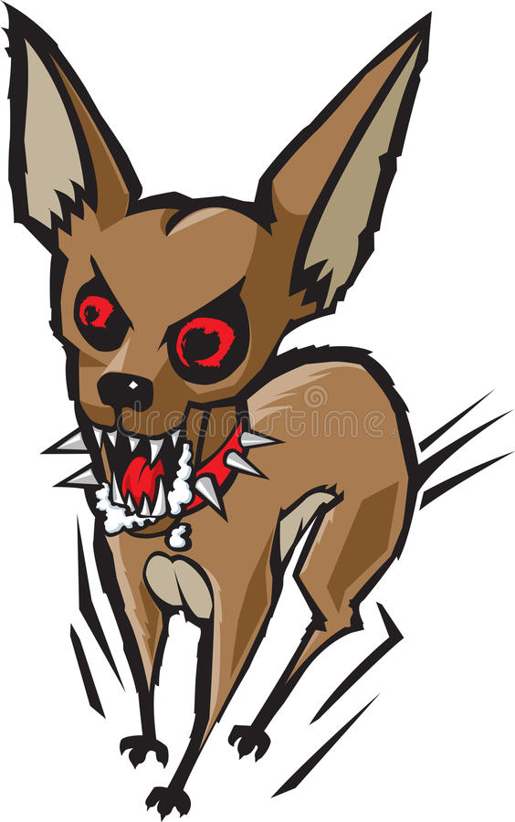 Loco chihuahua. A possessed looking cartoon chihuahua foaming at the mouth. As always, thank you for your time royalty free illustration