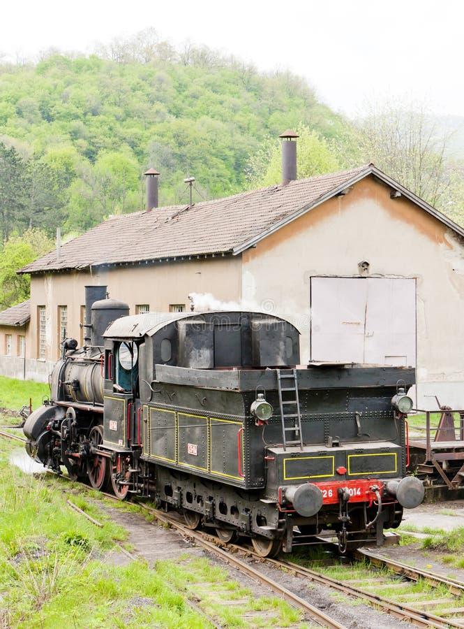 locomotive à vapeur et x28 ; 126 014& x29 ; , Resavica, Serbie photographie stock libre de droits