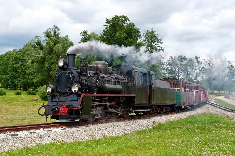 Locomotora ferroviaria del estrecho-indicador del vapor imagenes de archivo