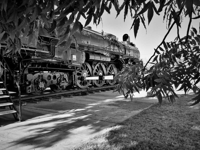 Locomotora vieja a través de los árboles imagen de archivo libre de regalías