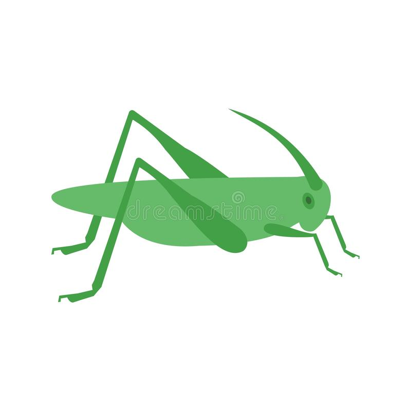 Locust Infestation. Grasshopper, head, insect icon vector image. Can also be used for disasters. Suitable for mobile apps, web apps and print media vector illustration