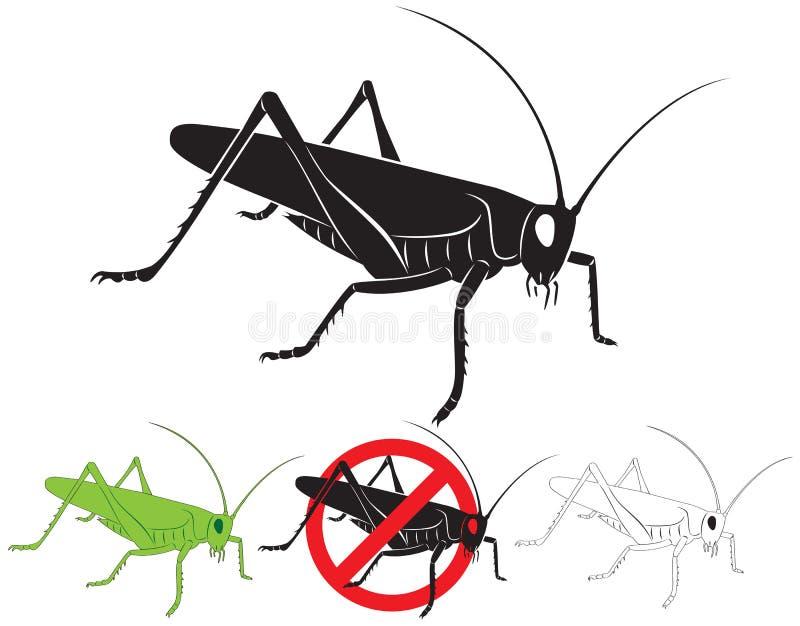 Locusta royalty illustrazione gratis