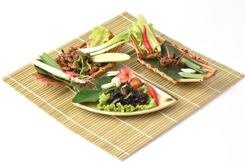 Download Locusta, Ensiferum E Bachi Da Seta Di Bombay, Fritti Fotografia Stock - Immagine di dieta, cuisine: 56877432