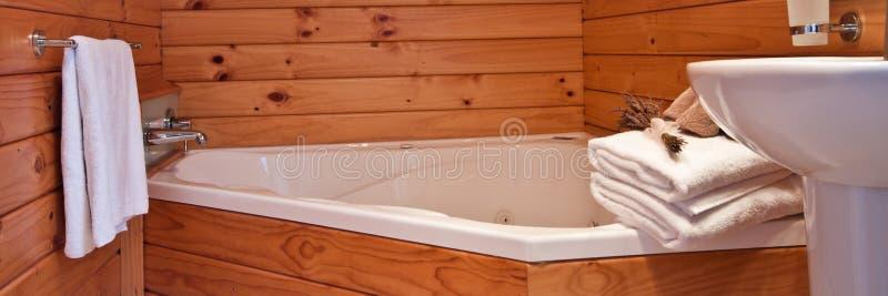 lodge Новая Зеландия ледника лисицы квартиры нутряной стоковое фото rf
