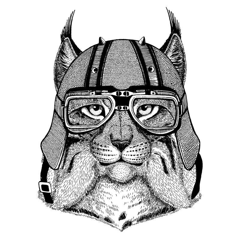 Lodjur lös katt, bobcat, trav som bär en motorcykel, aero hjälm Utdragen bild för hand för tatueringen, t-skjorta, emblem, emblem stock illustrationer