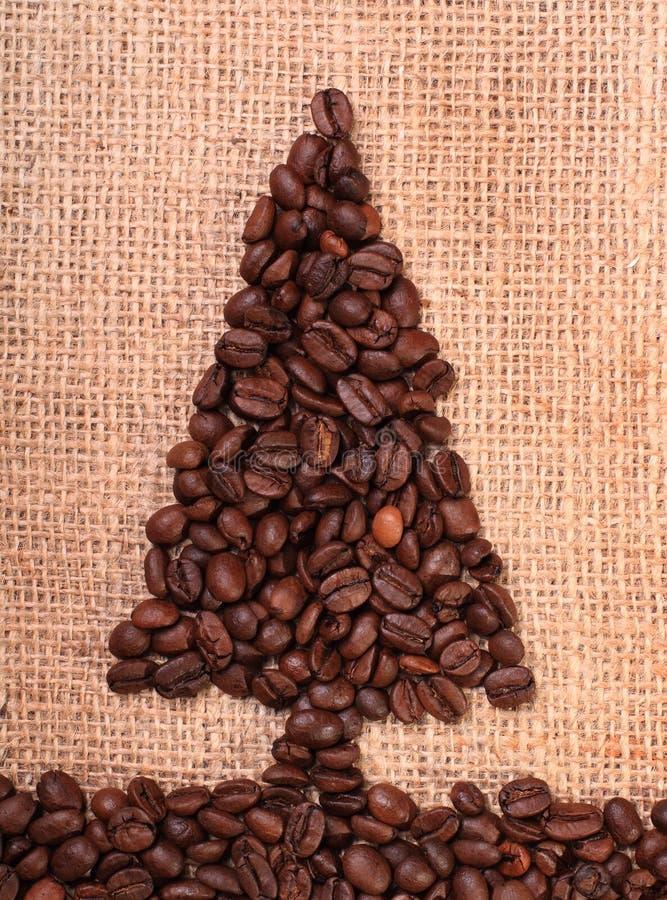 Lodlinje för träd för jul för kaffeböna arkivfoto