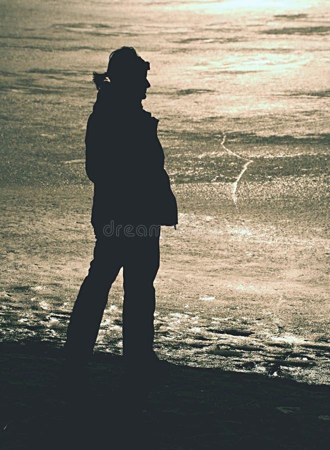 Lodowa pustynia zamarznięty jezioro Nic kobiety spojrzenia w kierunku horyzontu obrazy royalty free