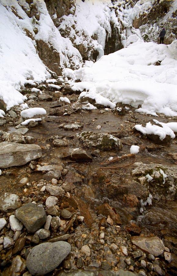 Lodowata rzeka obrazy stock