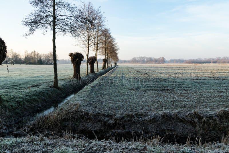 Lodowaty krajobraz w jesieni fotografia royalty free