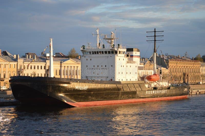 Lodowego łamacza statek obraz royalty free