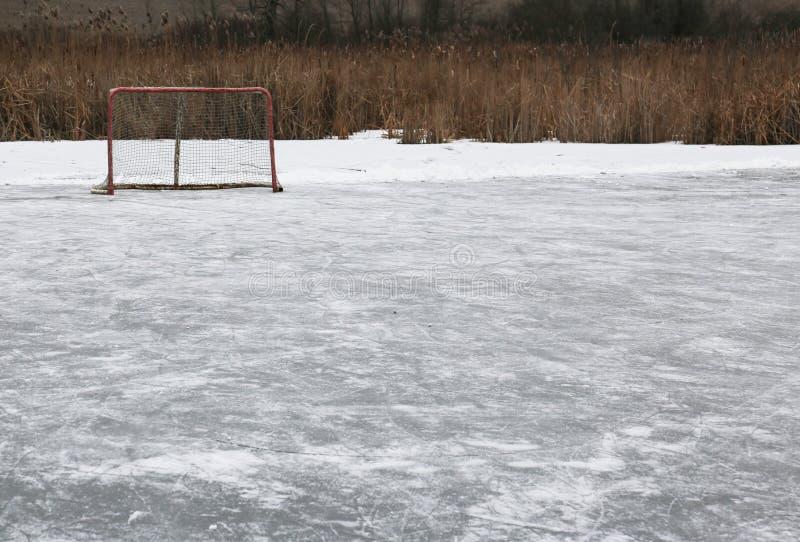 Lodowego hokeja pierścionek obraz royalty free