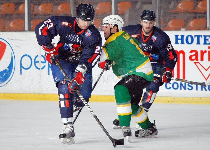 Lodowi gracz w hokeja fotografia stock