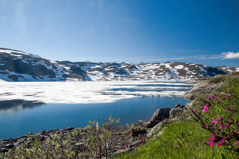 Lodowiec jezioro w Norwegia góry krajobrazie obraz stock
