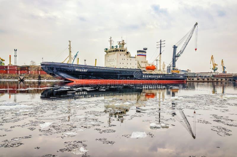 Lodowy łamacz Mudyug cumował przy portem morskim i lodowym dryfem na Dennym kanale obraz royalty free