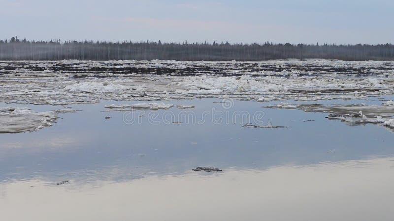 Lodowy dryf na rzece w Syberia zbiory