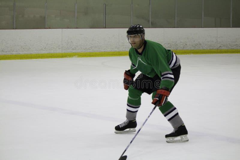Lodowy gracz w hokeja jeździć na łyżwach backwards zdjęcie stock