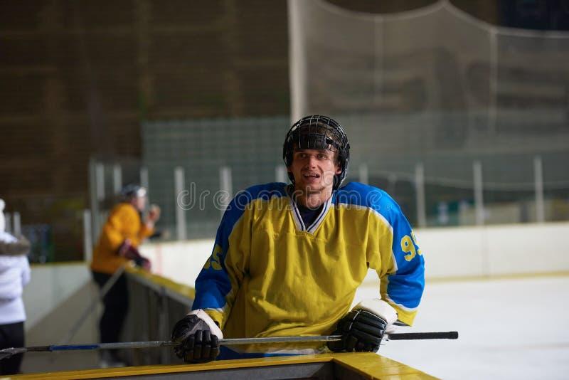 Lodowy gracz w hokeja portret obraz royalty free