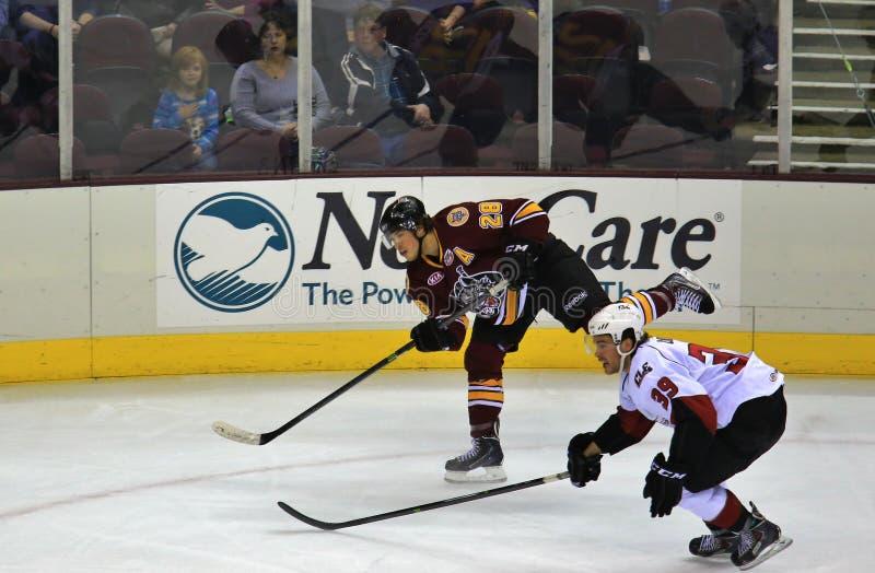 Lodowy hokej w akci fotografia royalty free