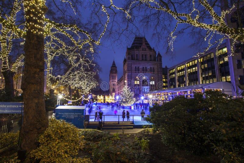 Lodowy lodowisko przy historii naturalnej muzeum w Londyn obrazy royalty free